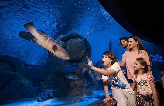 Best Fun Things To Do & Trips with Kids in Antalya